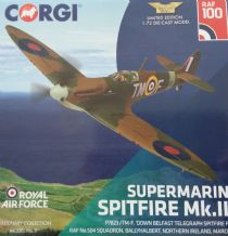 AA39213 Supermarine Spitfire Mk.IIa P7823 / TM-F, 'Down Belfast Telegraph Spitfire Fund' - 100 Years